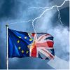 CPC Diploma  Brexit NIWO Ondernemer Beroepsvervoer
